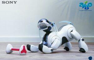 Sony возобновит выпуск роботов