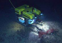 Подводного робота задействуют для поиска обломков после крушения Ту-154